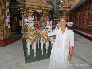Amma Changed My Life: Amrita Yoga Retreats, Amritapuri, India