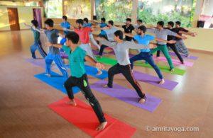 Amrita Yoga warrior pose group
