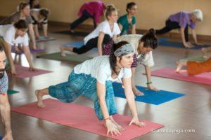 amrita yoga asana pose