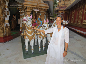 Amma Changed My Life: Amrita Yoga Retreats, Amritapuri, India