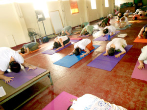 Amrita Yoga for Women at Amritapuri, India
