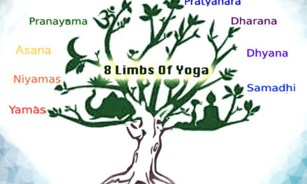 Ashtanga Yoga – The Eight Limbs of Yoga
