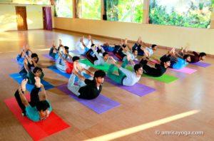 backbend pose asana amrita yoga