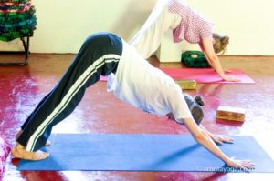 amrita yoga retreat class, forward bend