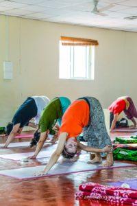 amrita yoga class forward bend pose variation