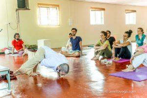 amrita yoga class demonstrate handstand variation yogasana