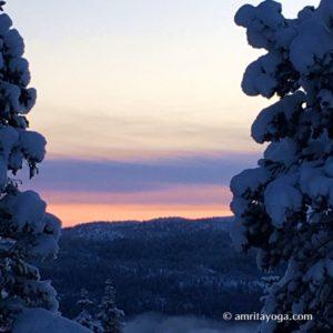 winter sunset scene with snow on trees