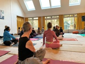 amrita yoga 2019 europe tour side twist