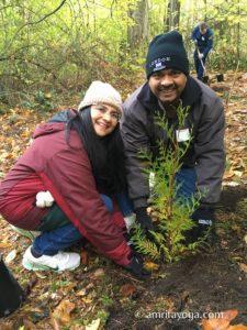 amma volunteers planting saplings