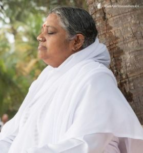 amma meditating next to tree