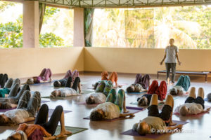 amrita yoga class photo