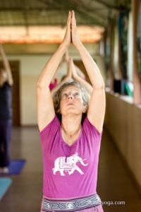 amrita yoga raised arms asana photo