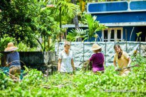 organic gardening at amritapuri ashram